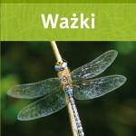 Ważki - przewodnik entomologa