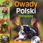 owady_polski_chrzaszcze01