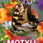 atlas-motyli-250-gatunkow