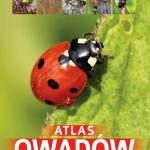 atlas-owadow-250-polskich-gatunkow