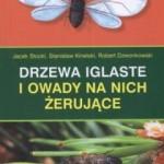 drzewa-iglaste-i-owady-na-nich-erujce_24503
